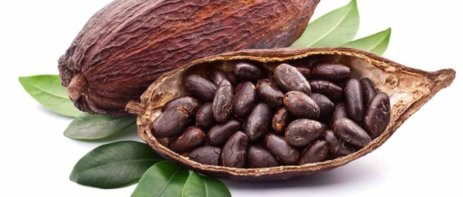 Natural Cacao from Food Thoughts